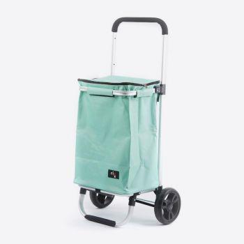 Rixx poussette de marché vert glacier 30L
