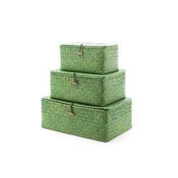 Cosy & Trendy Set3 Panier Paille Forme Poutre Vert