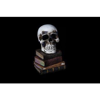 Cosy @ Home Tete De Mort  Gris Gres 11x11xh17 Books
