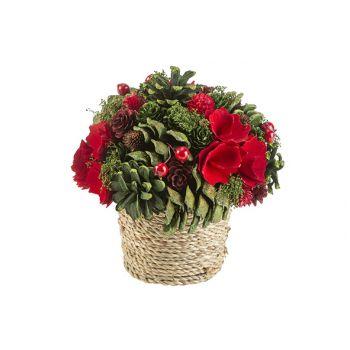 Cosy @ Home Composition De Noel Flower Pot Rouge Ver