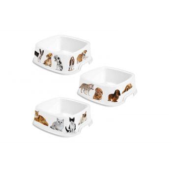 Hega Hogar Pet Mascotas Mangeoire Assorti