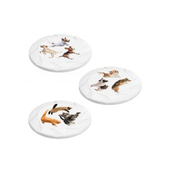 Hega Hogar Pet Mascotas Frisbee Assorti D21.7xh1.9