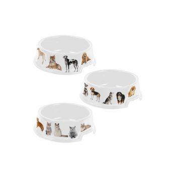 Hega Hogar Pet Mascotas Mangeoire Assorti 1l