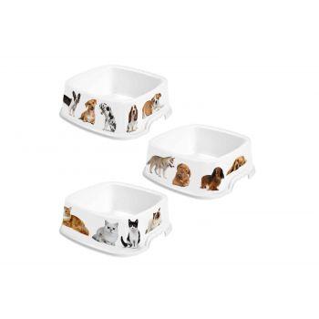 Hega Hogar Pet Mascotas Mangeoire Assorti 1,6l