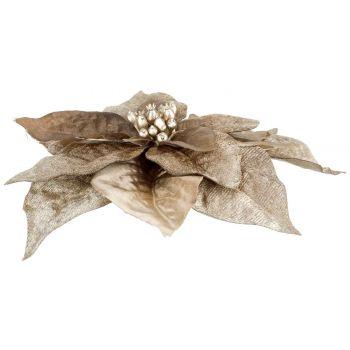 Cosy @ Home Clip Poinsettia Taupe 18x18xh4cm Plastic