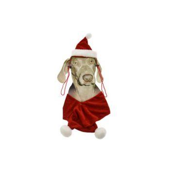 Cosy @ Home Costume De Noel Pour Chien Bonnet+echarp